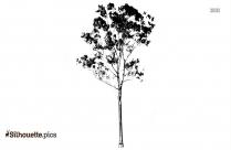 Palm Tree Icon Silhouette