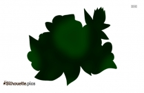 Black And White Flower Leaves Silhouette Picture