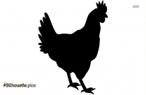Fat Chicken Silhouette Clip Art