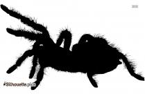 Fat Spider Silhouette Free Vector Art