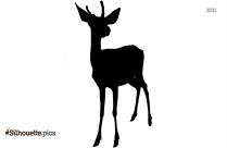 Deer Silhouette Image And Vector