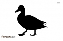 Young Duck Clip Art Silhouette