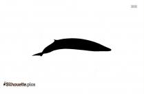 Bottlenose Whales Vector Silhouette
