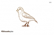 Finch Cartoon Bird Vector Silhouette