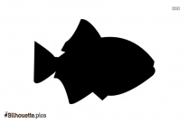 Fish Drawing Silhouette Art Picture
