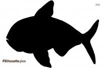 Marine Big Fish Swimming  Silhouette