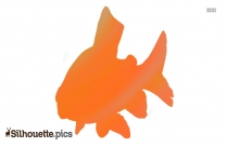 Fish Silhouette Transparent Background