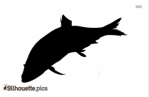 Cartoon Fish Silhouette Png