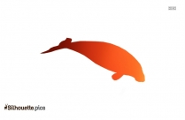 Fish Silhouette Image Free Download