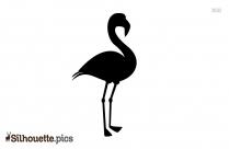 Flamingo Bird Clipart Silhouette