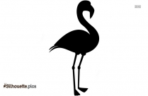 Ostrich Silhouette Safari Bird