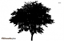 Florida Trees Silhouette Free Vector Art
