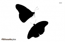 Butterfly Border Design Silhouette Background