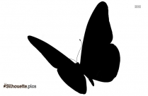 Butterfly Drawing Silhouette Icon Clipart