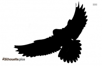 Flying Macaw Parrot Silhouette