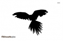 Phoenix Bird Silhouette Picture