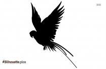 Cartoon Bird Flying Cute Silhouette