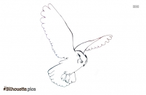 Flying Owl Outline Silhouette Background