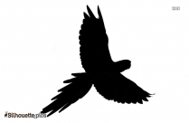 Parrot Silhouette Background