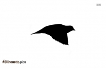 Flying Bird Silhouette Image And Vector