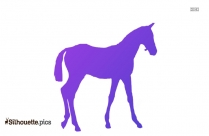 Foal Colored Silhouette