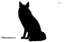 Jackal Coyote Silhouette Picture