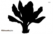 Banana Tree Silhouette Illustration