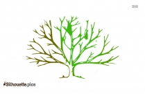 Free Bare Tree Illustration Silhouette