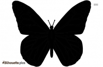 Free Butterfly Silhouette Image