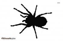 Free Cartoon Spider Silhouette