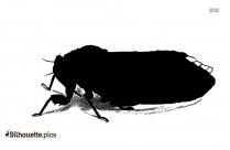 Free Cicada Bug Silhouette