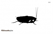 Free Cockroach Silhouette
