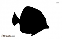 Aquatic Fish Silhouette Image And Vector