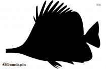 Black And White Fish Drawings Silhouette