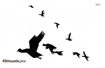 Birds Flying In The Sky Silhouette Image