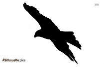 Flying Macaw Parrot Bird Silhouette