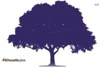 Black And White Oak Tree Silhouette