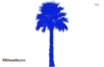 Coconut Tree Drawing Outline Silhouette