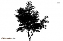 Tree Drawing Silhouette Clipart