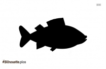 Free Trout Fish Silhouette