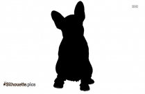 Flat Coated Retriever Dog Silhouette