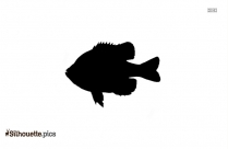 Cartoon Great Shark Silhouette Image