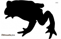 Frog Toad Silhouette Art