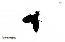 Fruit Flies Silhouette