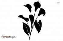 Calla Lily Silhouette, Calla Clipart Free Vector Download