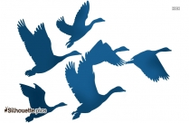 Gaggle Of Geese Silhouette Picture