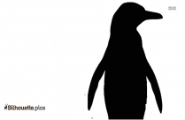 Picture Of African Penguin Silhouette