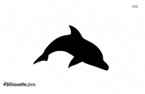 Glass Dolphin Figurines Silhouette Background