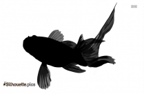Black And White Porgy Fish Silhouette