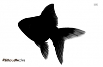Black Goldfish Silhouette Image